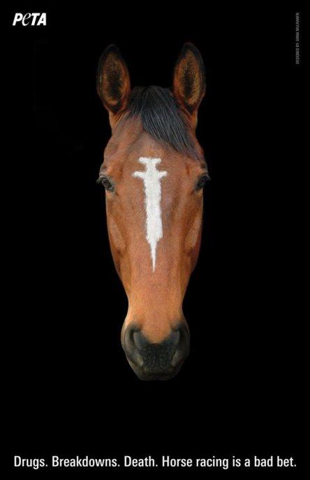 3276.Peta_HorsePoster_Mulranen_RGB.jpg-550x0